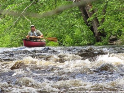 Reading the Rapids
